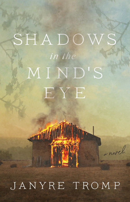 Shadows in the Mind's Eye
